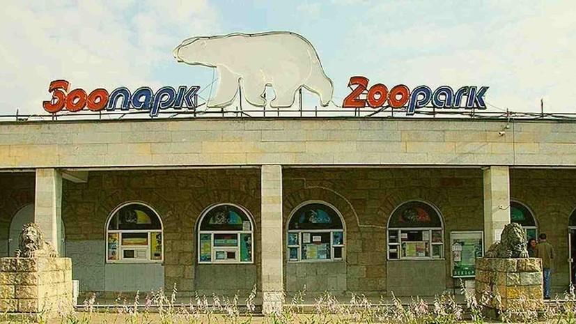 В Ленинградском зоопарке рассказали о благотворительной программе «Опека»