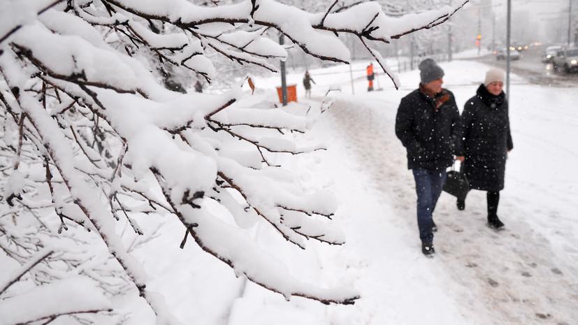 Вильфанд рассказал, где отыскать снег в России
