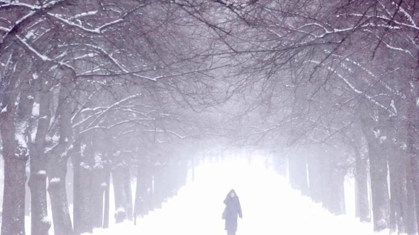 Синоптики рассказали о погоде на Ямале в новогоднюю ночь