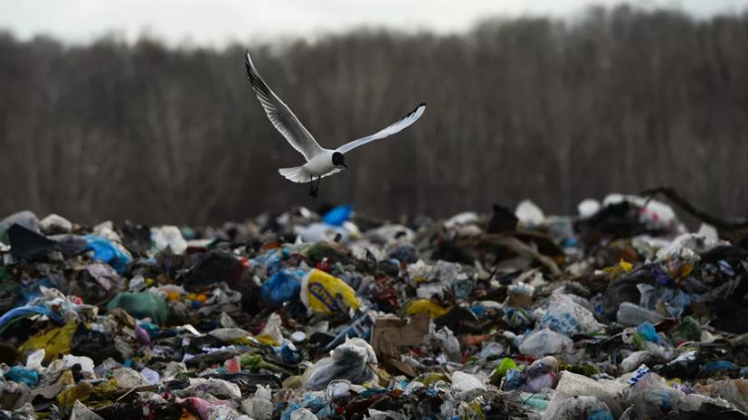 В Подмосковье закрыли мусорный полигон «Каргашино»