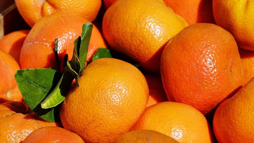Эксперты дали рекомендации по выбору мандаринов к новогоднему столу