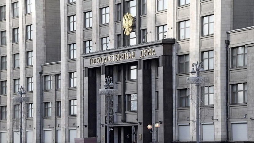 В Госдуме прокомментировали предложение выдавать «новогодние визы» иностранцам