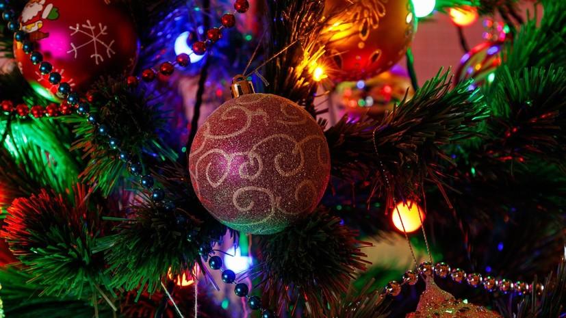 Геннадий Малахов напомнил об умеренности при праздновании Нового года