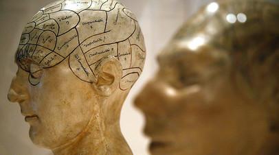 «Уязвимый мир»: шведский философ — о будущем человечества, тотальной слежке и искусственном интеллекте