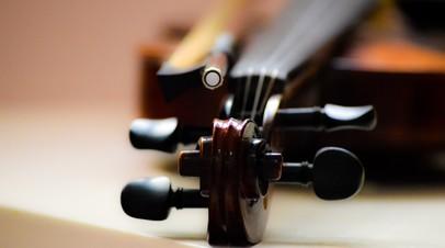 Нижегородский музей получит скрипку XIX века, конфискованную на границе