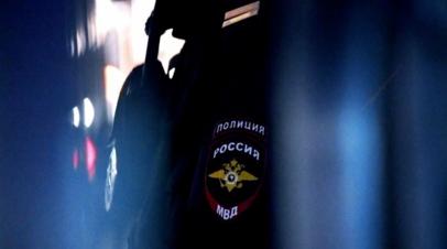 Оренбургская полиция передала изъятых черепах в Союз зоопарков и аквариумов России