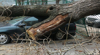 Около 30 тысяч жителей ряда областей России остались без света из-за шторма