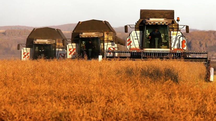 В Адыгее направят 555,3 млн рублей на господдержку аграриев
