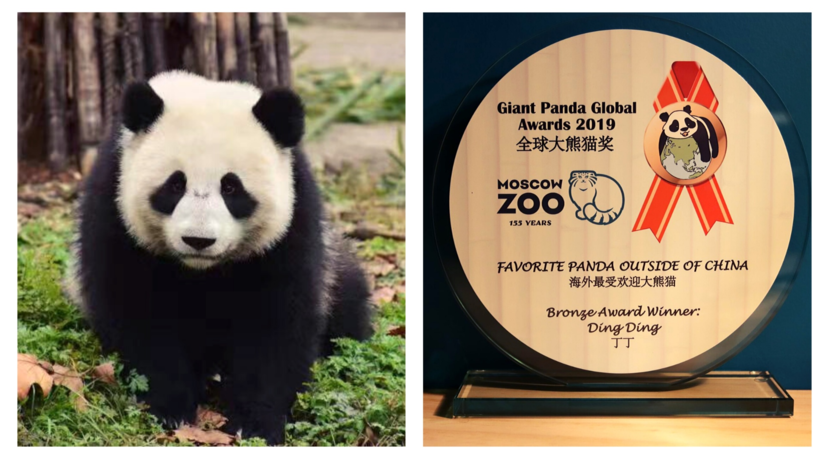 Московский зоопарк получил три премии The Giant Panda Global Awards