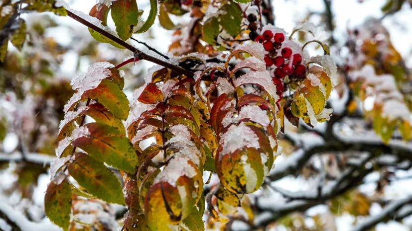 Спасатели предупредили о мощном снегопаде в Карелии
