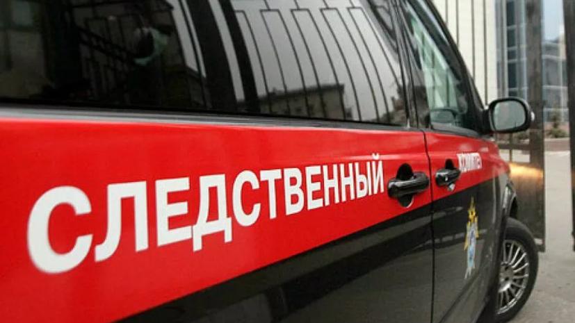 СК возбудил дело после нападения собак на школьника в Якутии