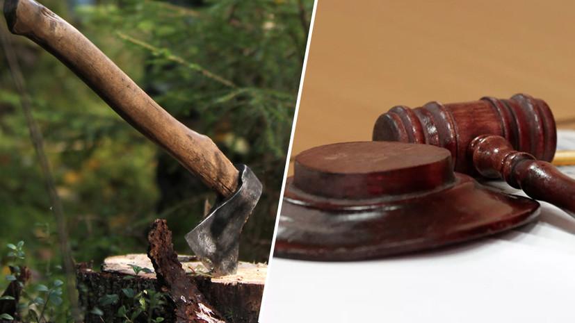 «Распиливал то, что лежало на земле»: на Кубани сироту судят за вырубку двух деревьев в школьном парке