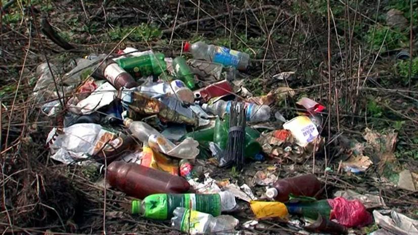 В лесах Подмосковья ликвидировали 600 свалок в 2019 году