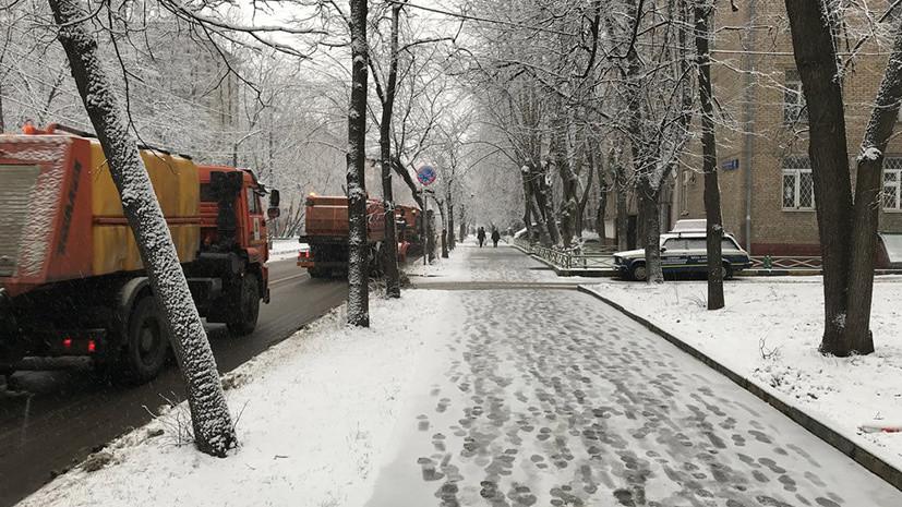 Январский снегопад и розовый февраль: какую погоду обещают синоптики москвичам в ближайшее время