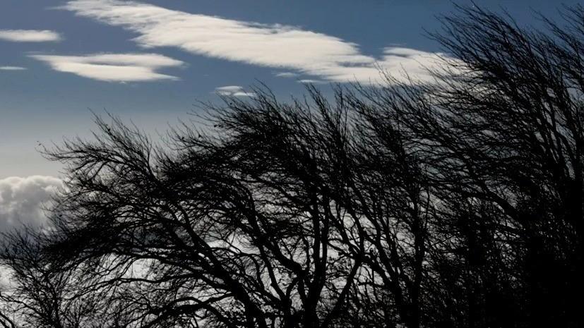 В Башкирии предупредили об усилении ветра до 18 м/с