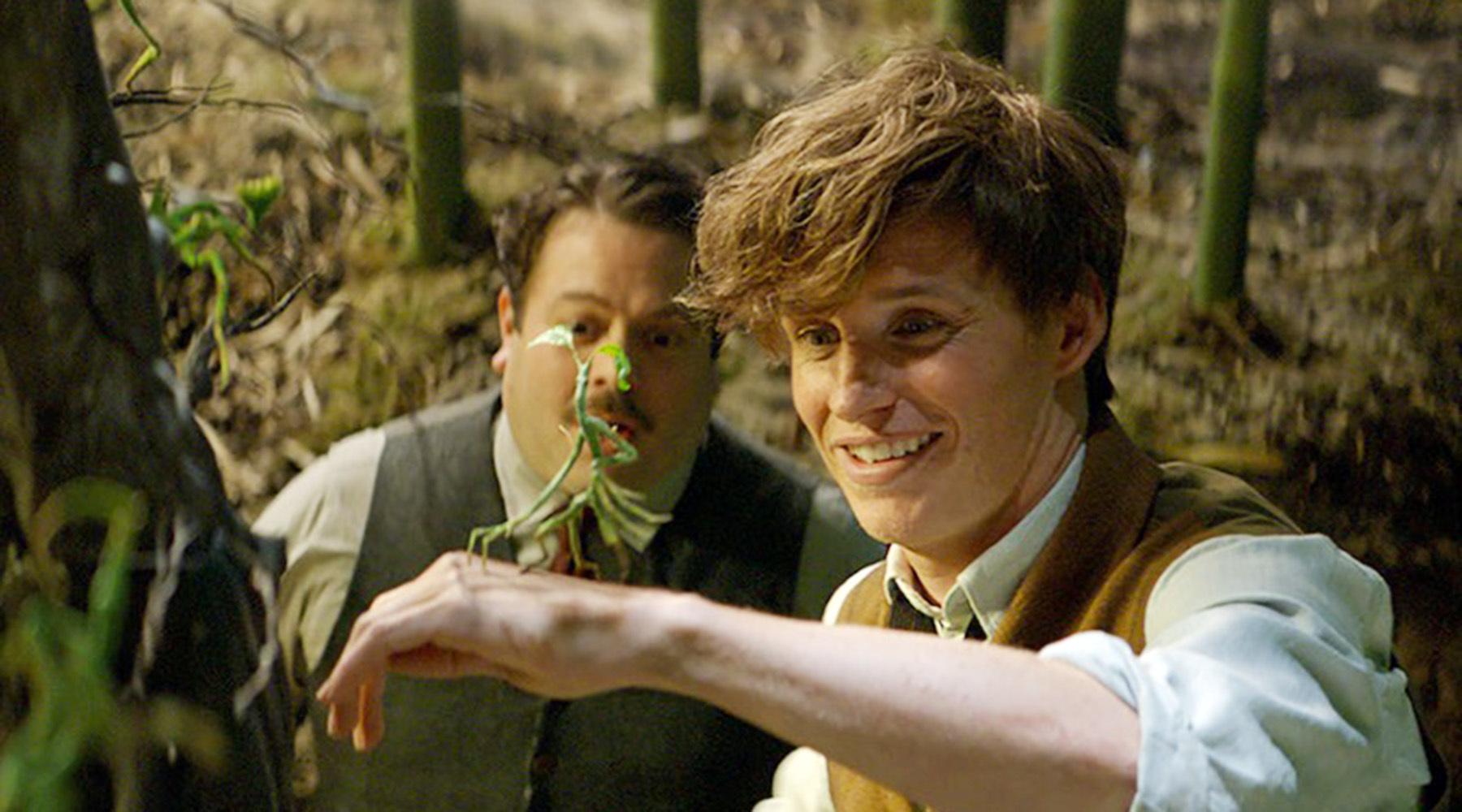 Естественные чудеса: в Великобритании выпустят телешоу по вселенной Гарри Поттера