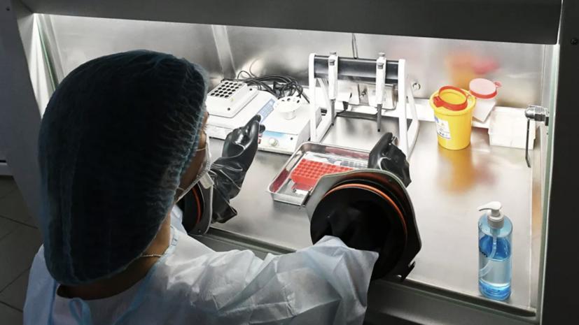 Россия передала Армении тест-системы для определения коронавируса