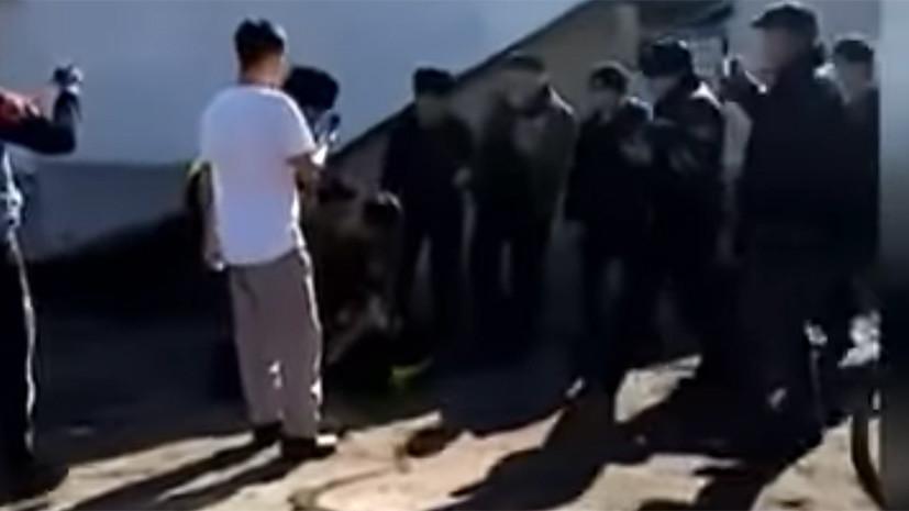 В Казахстане назвали причину массовой драки с восемью погибшими