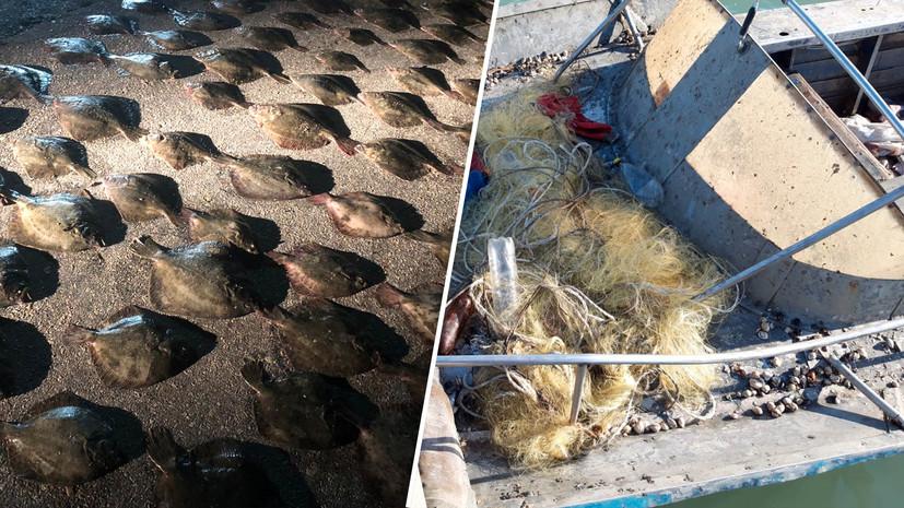 «Документы на право добычи отсутствовали»: пограничники ФСБ задержали в Азовском море украинских браконьеров