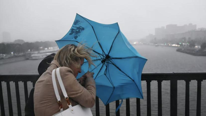МЧС предупреждает о сильном ветре в Москве