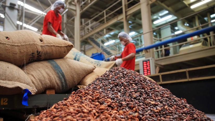 Шоколадное сырьё: как рекордный рост цен на какао-бобы может сказаться на кондитерской индустрии России