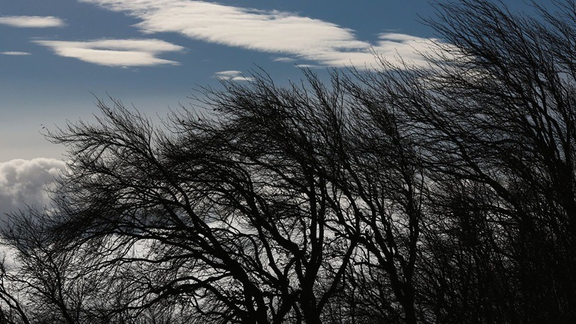 Синоптики предупредили об усилении ветра до 22 м/с в Оренбургской области