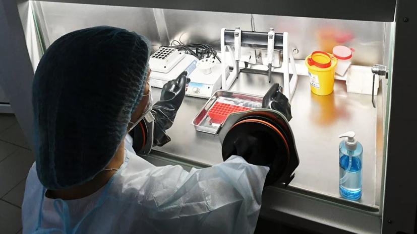 В Петербурге начал работу центр диагностики коронавируса