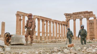 Российские сапёры занимаются разминированием древней Пальмиры