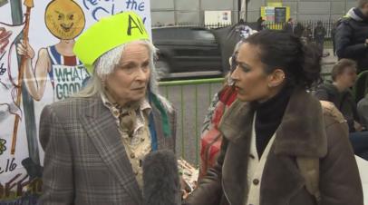 «Закон выворачивают наизнанку»: Вивьен Вествуд выступила в поддержку Ассанжа
