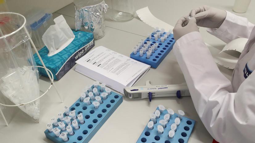 Число заражённых коронавирусом в Нидерландах достигло 82