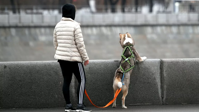 В Москве установлен абсолютный температурный рекорд для 7 марта