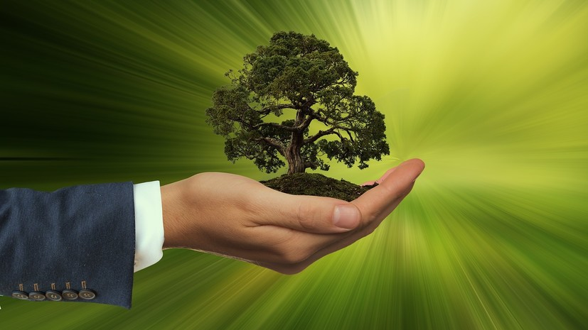 В России предложили ввести должность омбудсмена по вопросам экологии