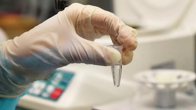 Российские учёные смогли расшифровать геном коронавируса