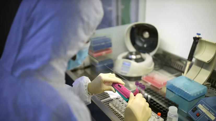 Россия передала 13 странам тест-системы для выявления коронавируса