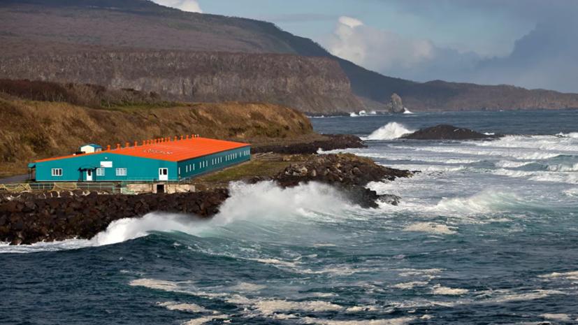 В МЧС назвали высоту волны цунами после землетрясения на Курилах
