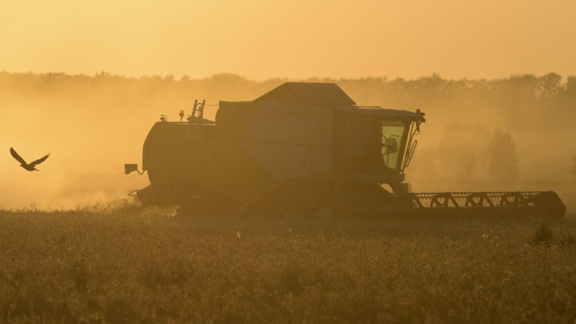 В АККОР прокомментировали идею снижения стоимости электроэнергии для фермеров