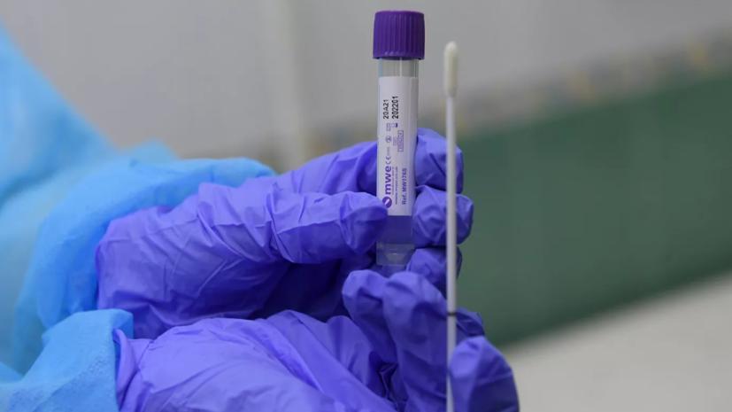 Учёные определили температуру активизации коронавируса
