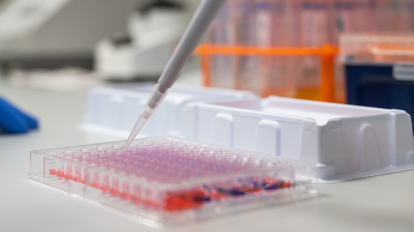 Новые случаи заражения коронавирусом выявили в 24 регионах России