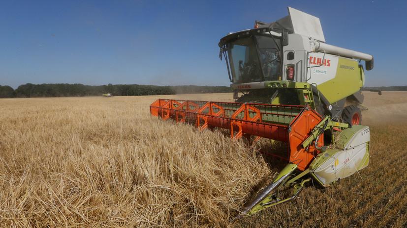 «Никто не хочет дефолта»: к чему может привести открытие рынка сельхозугодий на Украине