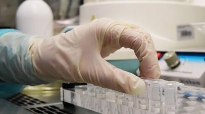 Тестирование проб на коронавирус в лаборатории