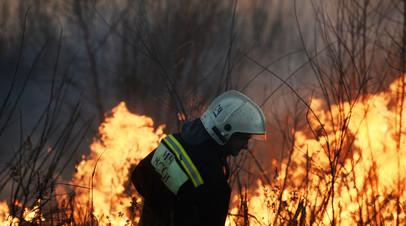 В Красноярском крае ликвидировали природный пожар