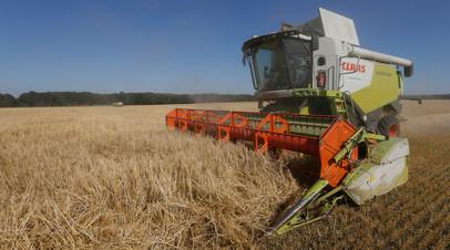 Уборка урожая в Киевской области