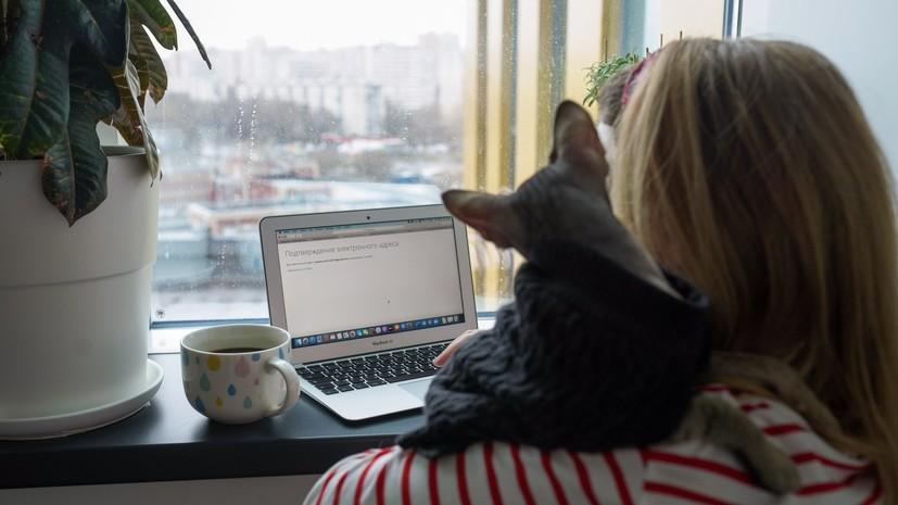 Эксперты сообщили о росте интереса к удалённой работе в России