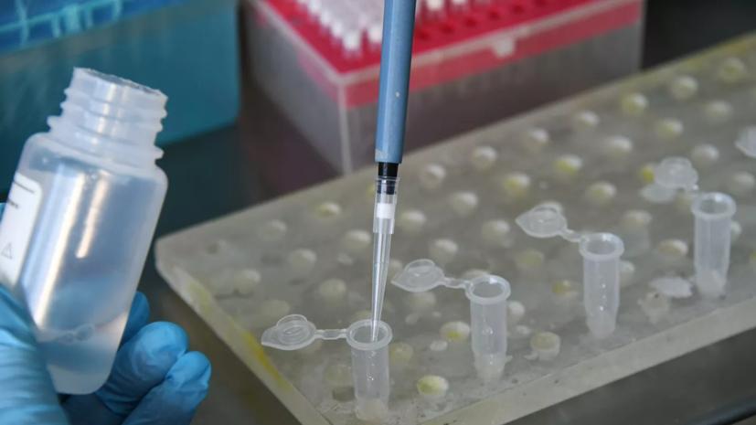 В России проведено почти 700 тысяч тестов на коронавирус