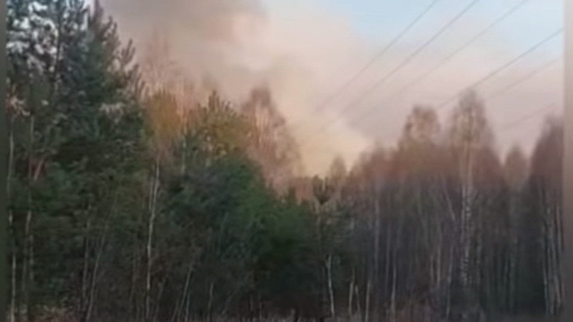 На Украине рассказали об уровне радиации в очаге пожара в чернобыльской зоне