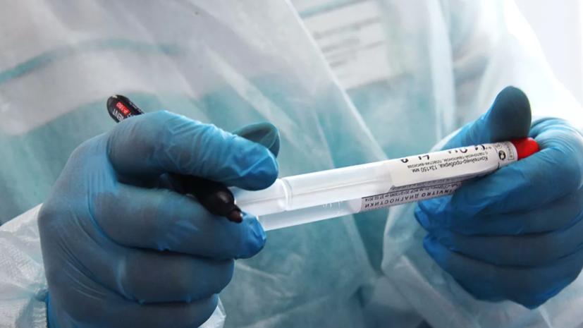 В России проведено почти 800 тысяч тестов на коронавирус