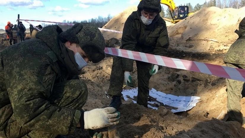 В Ленобласти нашли останки 75 красноармейцев