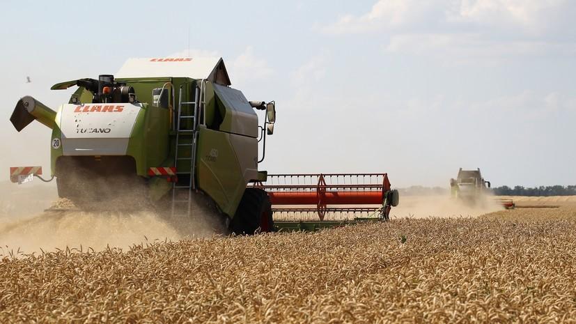 Bloomberg предупредило о дефиците российской пшеницы в мире