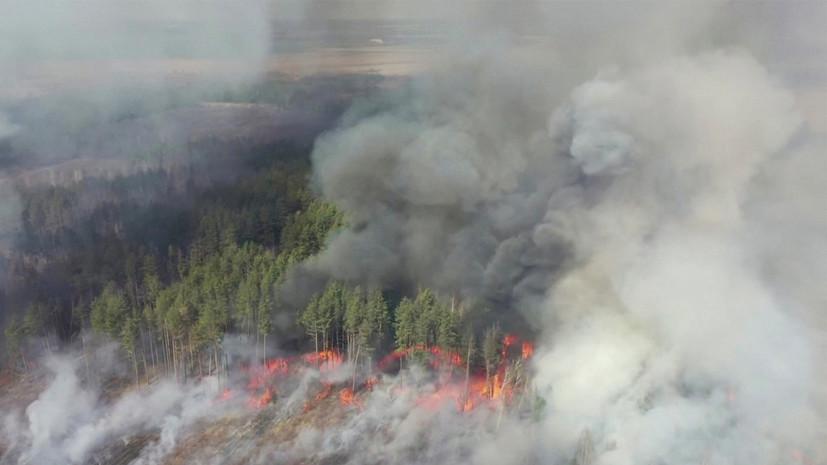 В зоне отчуждения ЧАЭС наблюдаются верховые пожары