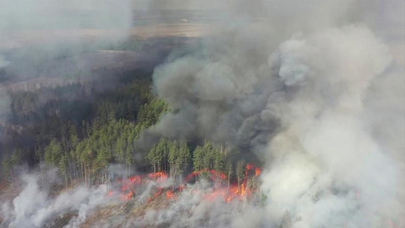 Зеленский прокомментировал ситуацию с пожаром в чернобыльской зоне